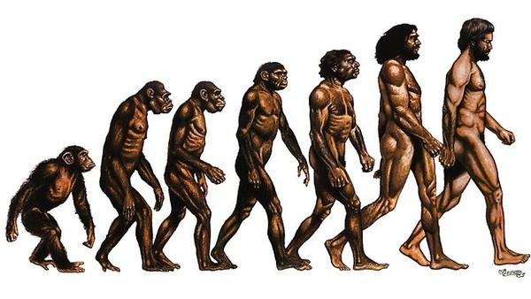 Apa yang bisa diajarkan manusia Neanderthal tentang tidur di abad ke-21